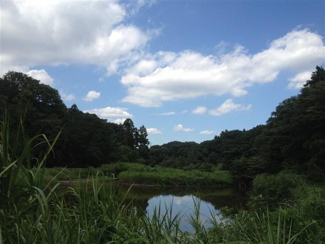 城朋子 - JapaneseClass.jp